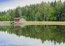 Floresta refletida no lago Fotografia de Stock