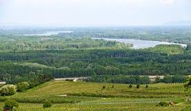 Floresta ribeirinho do vale de Danúbio Fotos de Stock Royalty Free