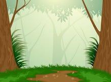 Floresta sempre-verde tropical ilustração stock