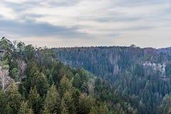 Floresta sobre em Sudetenland, crescendo em montanhas do arenito Fotografia de Stock Royalty Free