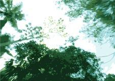 Floresta subaquática Fotos de Stock Royalty Free