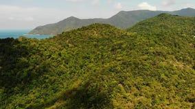 Floresta tropical na ilha Opinião fantástica do zangão da selva verde no cume da montanha de surpreender a ilha tropical Mar azul filme