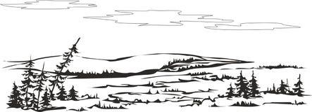 Floresta-tundra ilustração stock