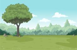 Floresta verde com grama e árvores Foto de Stock