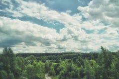 Floresta verde em um vale montanhoso do relevo imagens de stock