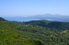 Floresta verde-oliva na ilha de Corfu, Grécia fotos de stock