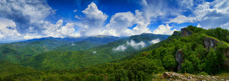 Floresta verde sob um céu azul com nuvens Imagem de Stock Royalty Free