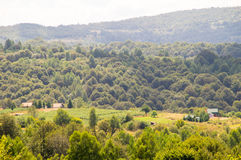 Florestas, campos e cumes de Dinaric das montanhas na Sérvia Imagem de Stock