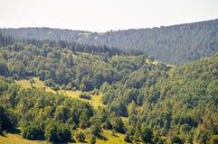 Florestas, campos e cumes de Dinaric das montanhas, Sérvia Foto de Stock