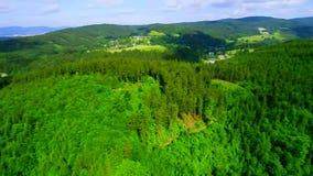 Florestas, cidade e represa video estoque