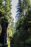 Florestas da rocha do rio Imagem de Stock Royalty Free