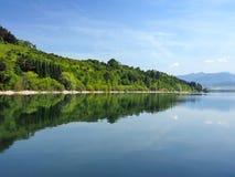 Florestas refletidas em Liptovska Mara, Eslováquia Foto de Stock