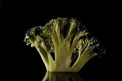Floretes del bróculi Foto de archivo libre de regalías