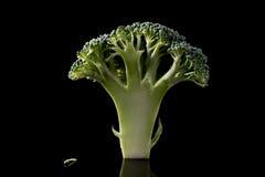 Floretes del bróculi Imagen de archivo libre de regalías