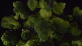 Floretes verdes del bróculi almacen de metraje de vídeo