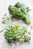 Florets μπρόκολου Στοκ Εικόνα