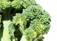 Florets dos bróculos imagem de stock