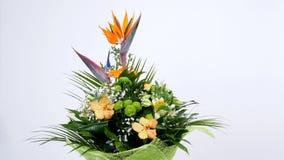 Florezca el ramo en el fondo blanco, rotación, la composición floral consiste en el Strelitzia, crisantemo, Phalaenopsis metrajes