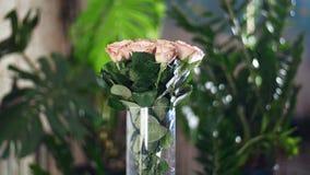 Florezca el ramo en los rayos de la luz, rotación, la composición floral consiste en capuchino de las rosas Belleza divina En metrajes