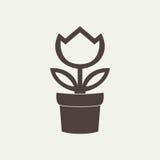 Florezca en el icono del pote aislado en el fondo blanco Fotografía de archivo libre de regalías