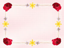 Florezca la frontera de la tarjeta Imagen de archivo