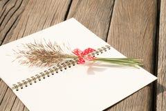 Florezca la hierba con el arco rojo y el cuaderno en la tabla de madera Imágenes de archivo libres de regalías