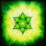 Florezca la mandala en un efecto verde del fractal del fondo