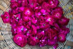 Florezca los pétalos para la ceremonia del puja en los bancos del río de Ganga en Varanasi Fotografía de archivo