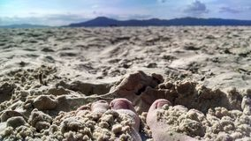 Florianà ³ polis海滩 免版税库存图片