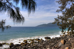 Florianopolis Brazil. Beach florianopolis brazil in summer Royalty Free Stock Images