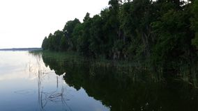 Florida湖 库存照片