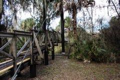 Florida-Überdachungs-Gehweg Stockbilder