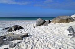 Sand dunes in Florida panhandle. Beautiful white sand dunes with rocks in the Florida panhandle royalty free stock image