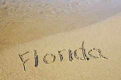 florida arkivfoto