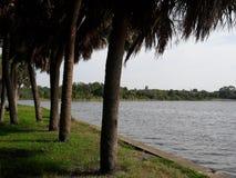 Florida Arkivfoton