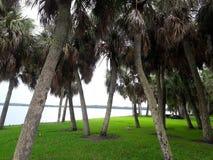 Florida 2 Fotografering för Bildbyråer