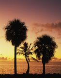 Florida Bay at sunrise Royalty Free Stock Photo