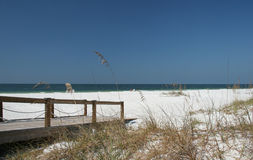Florida Beach. Caladesi Island beach, Florida Stock Photography
