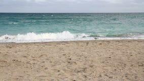 Florida beach and atlantic ocean landscape stock footage