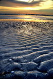Florida Beach at Sunset. Rippled black sand beach at sunset into the Gulf off the coast of Florida with golden sunset and tide out Royalty Free Stock Image