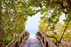 Florida bonita Bay Barefoot beach US royalty free stock photography