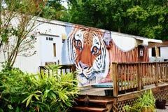 Florida catty shack  wildlife sanctuary  x-ray facility Stock Image