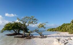 Florida chiude a chiave la spiaggia di Anne immagine stock libera da diritti