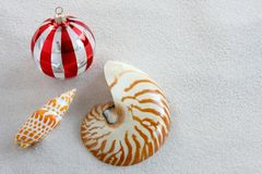 Florida Christmas Ornaments on White Sand. Tropical Shells and Christmas Ornaments on a White Sand Beach royalty free stock image