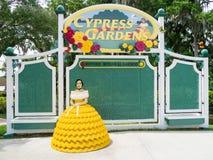 florida cyprysowi ogródy zdjęcie stock