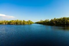 Florida Everglades Arkivbilder
