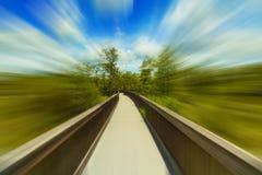 Florida Everglades blur Stock Image