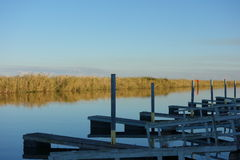 Florida Everglades. Reflections at a dock in the Florida Everglades at sunset Stock Photos