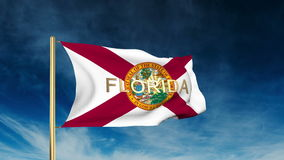 Florida flag slider style with title. Waving in stock video