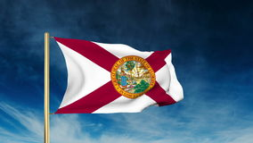 Florida flag slider style. Waving in the win with stock video footage
